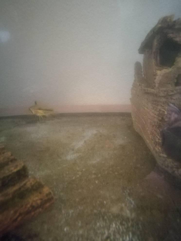 Kakadu zwergbuntbarsch nachwuch seite 2 aquarium forum for Aquarium becken